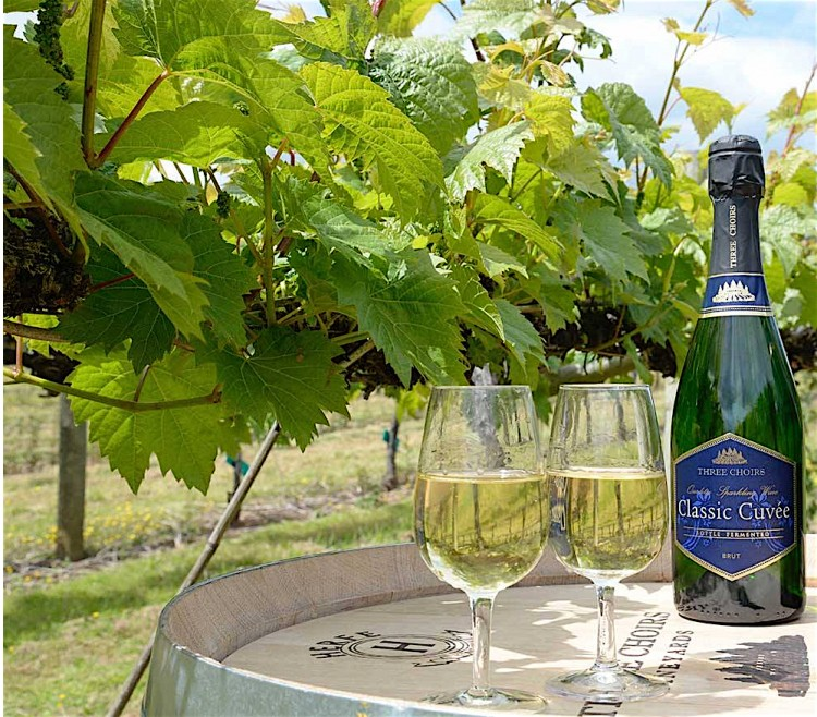 English vineyards