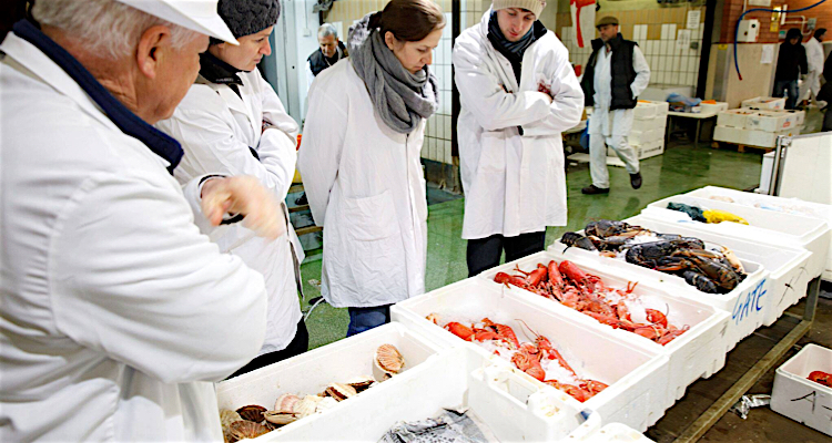 Tour the floor at Billingsgate Market and learn all about the freshest fish to buy!
