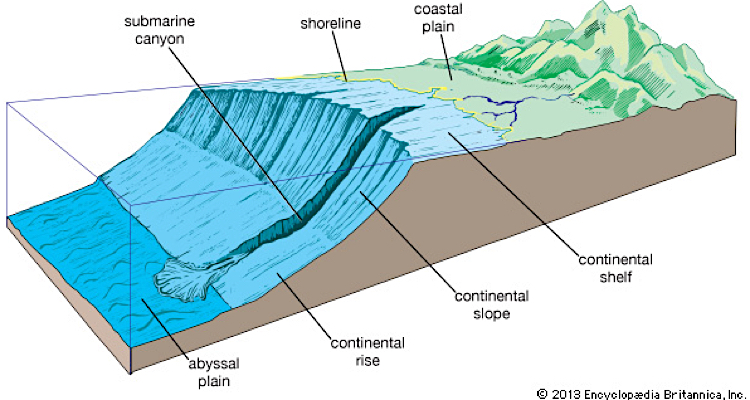 Continental shelf graphic