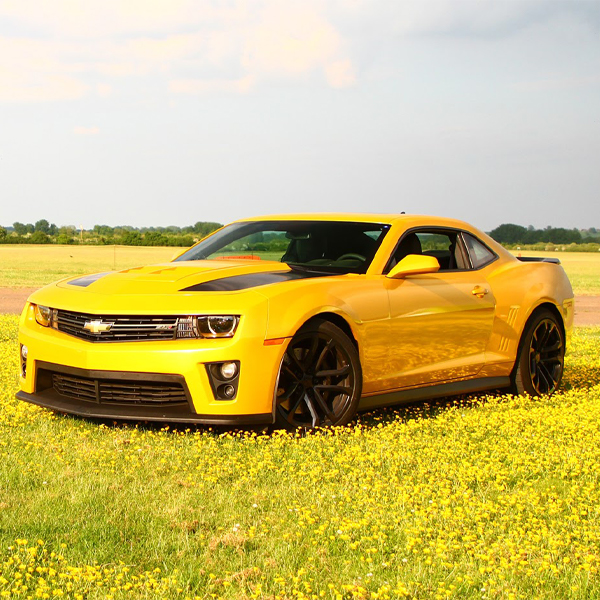 Transformers bumblebee Experience