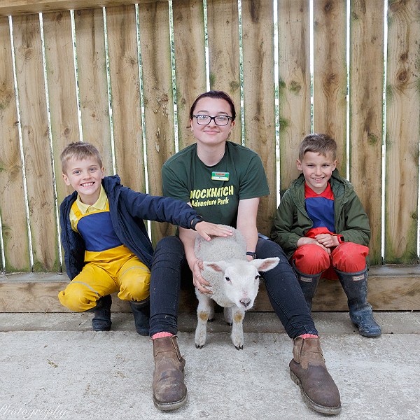 Animal Keeper Experience In Sussex