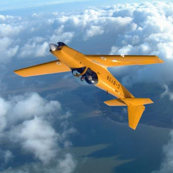 Firefly Aerobatics Experience Essex