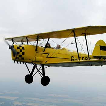 Gloucestershire tiger moths