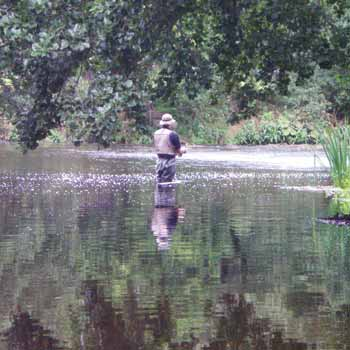 Fly Fishing Derbyshire Picture