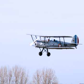 Stampe Aerobatic Flights