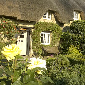 Romantic Thatched Cottage Break Picture