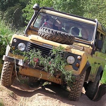Mud & Mayhem Driving