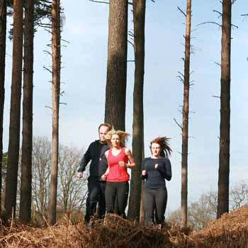 Taster Fitness Retreat Bucks