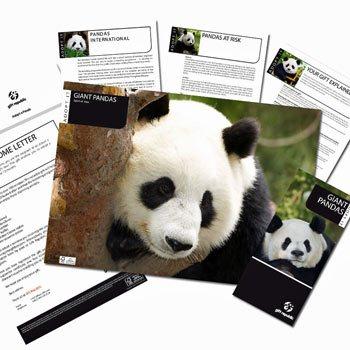 Adopt A Panda Picture