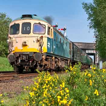 Diesel Locomotive Driving
