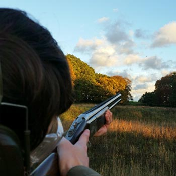 Elveden Estate Clay Pigeon Shooting Picture
