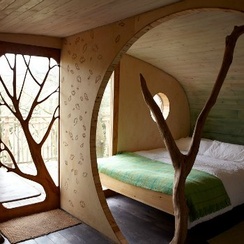 inside a treehouse