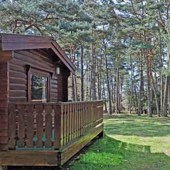 Two Night New Forest Lodge Break for Six