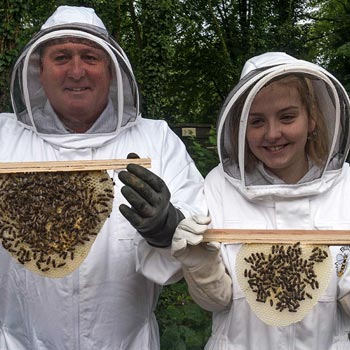 Bee Experience Lancashire Picture