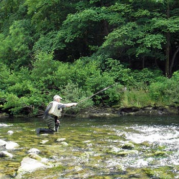 Fly Fishing North Yorkshire Picture