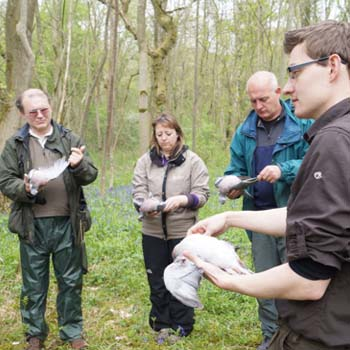 Wild Food Foraging Wiltshire