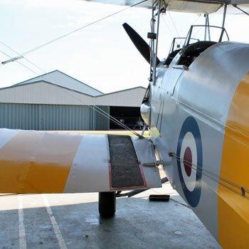 Tiger Moth Flight In Kent