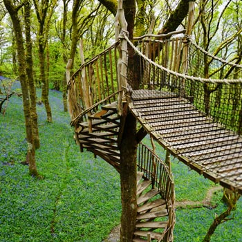 treehouse spiral stairs