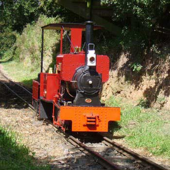 Drive a Train at Sherwood Forest