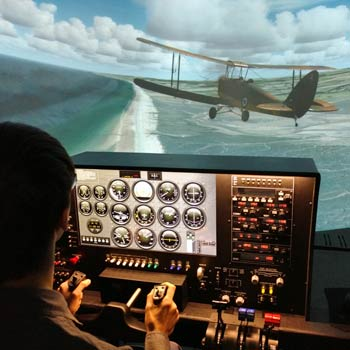 Flight Simulator Norfolk Picture