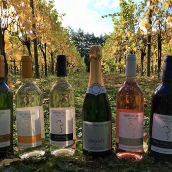 Wine Tours In Cambridgeshire