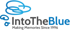 Into The Blue Logo